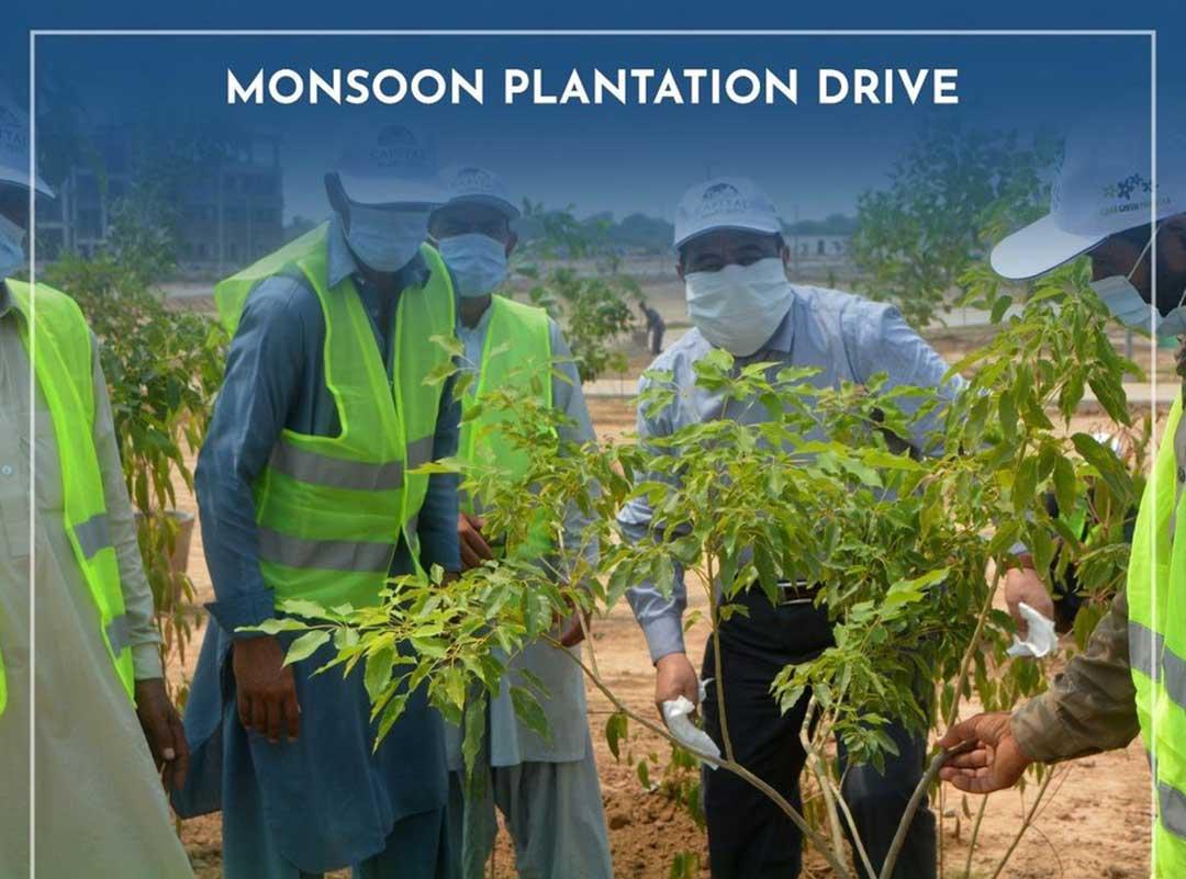Monsoon Tree Plantation Drive